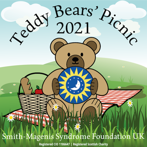 Teddy Bears' Picnic campaign image
